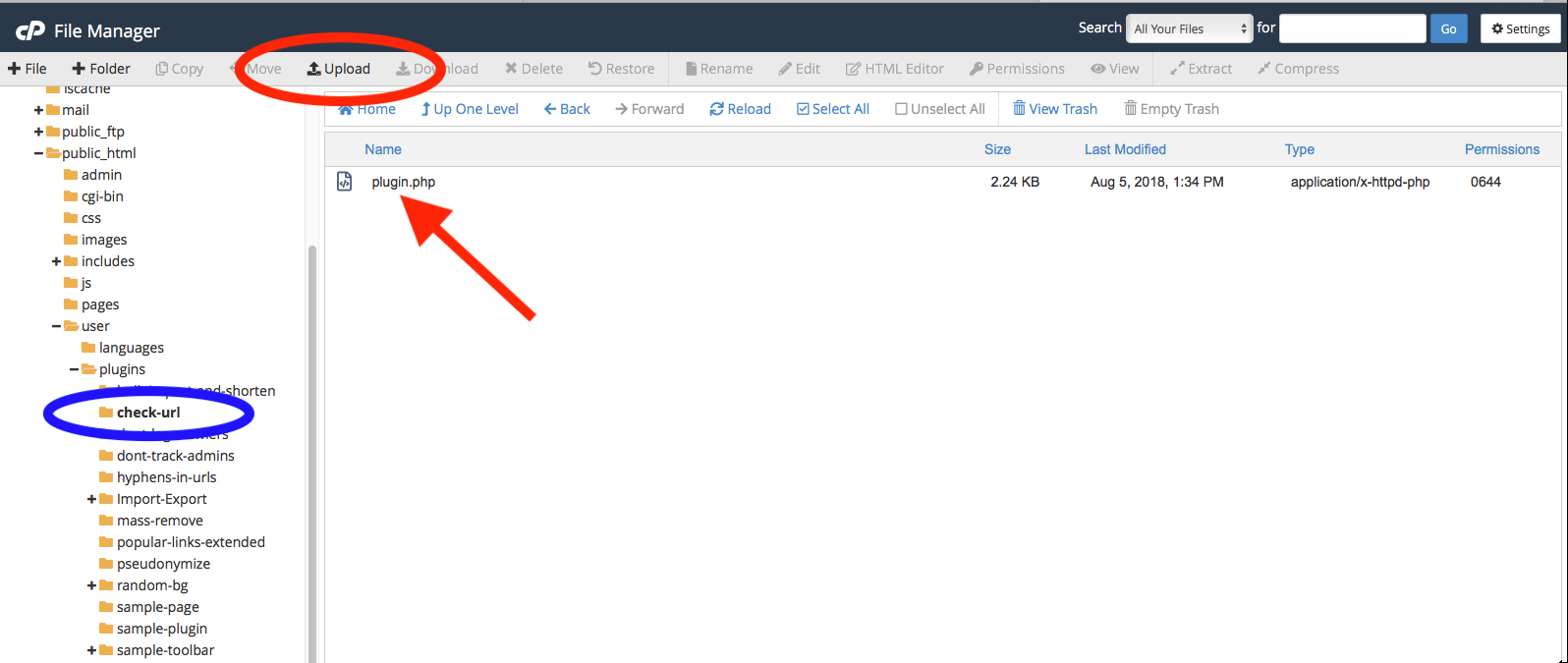 Inside the plugin folder in cPanel