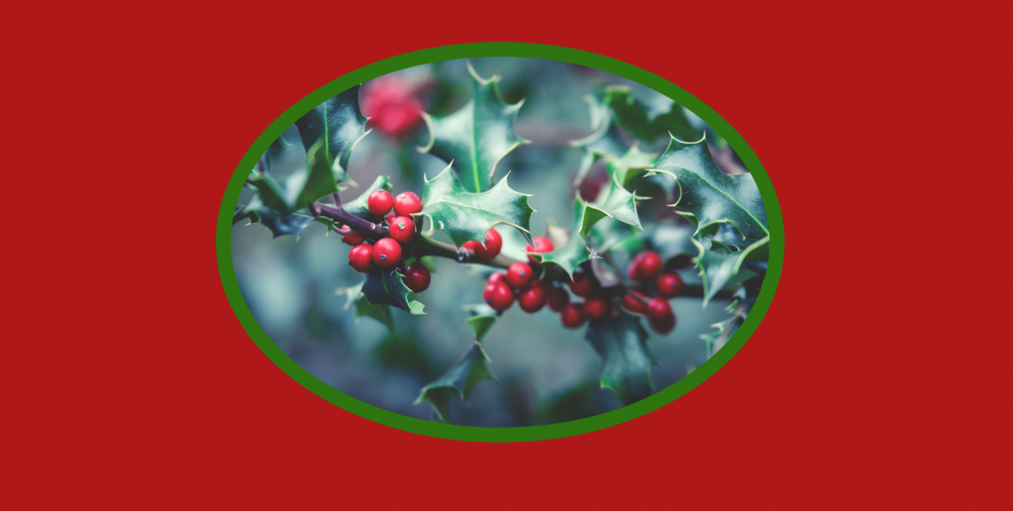 Holly with berries image